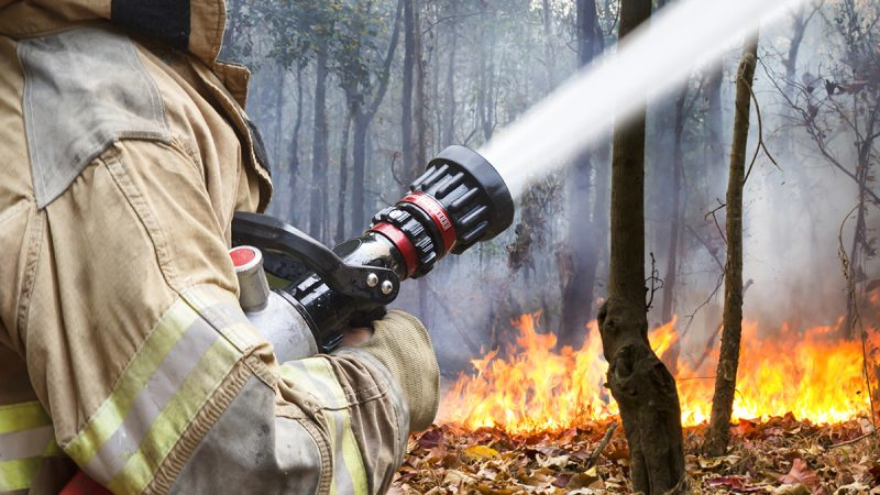Firefighters help battle a wildfire