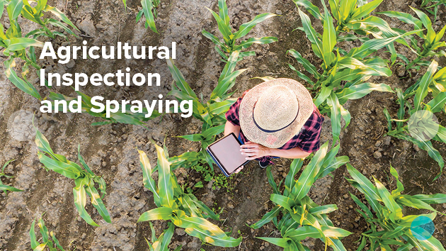 Agricultural inspection and spraying