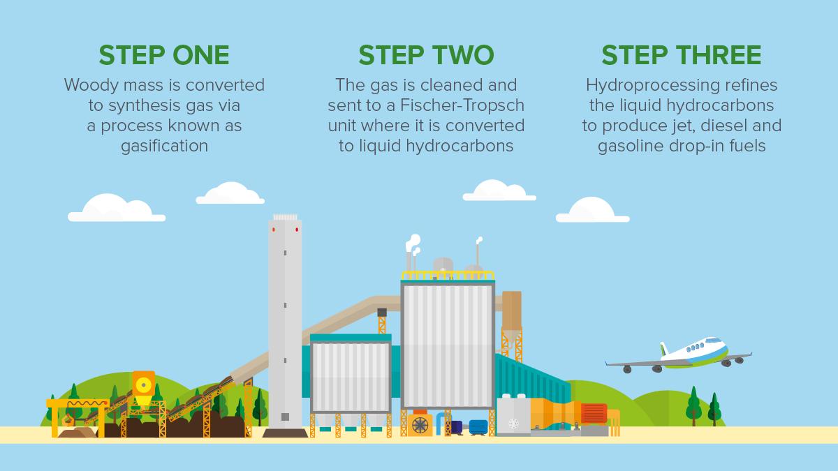 Renewable energy insurance bioconversion process